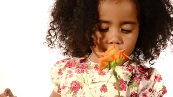 Funny mixed race black and latino brazilian little girl isolated blowing soap bubbles and sniffing rose