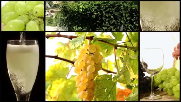 bílé víno koláž