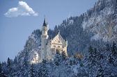 Winter-Blick auf Burg Fussen, Bayern, Deutschland
