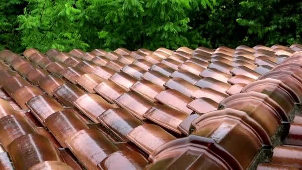 Déšť na střeše