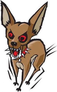 Loco Chihuahua