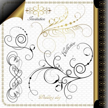 A collection of vintage calligraphic elements, Black and Gold Design