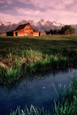 Old Barn Antelope Flats Grand Tetons Wyoming Vertical
