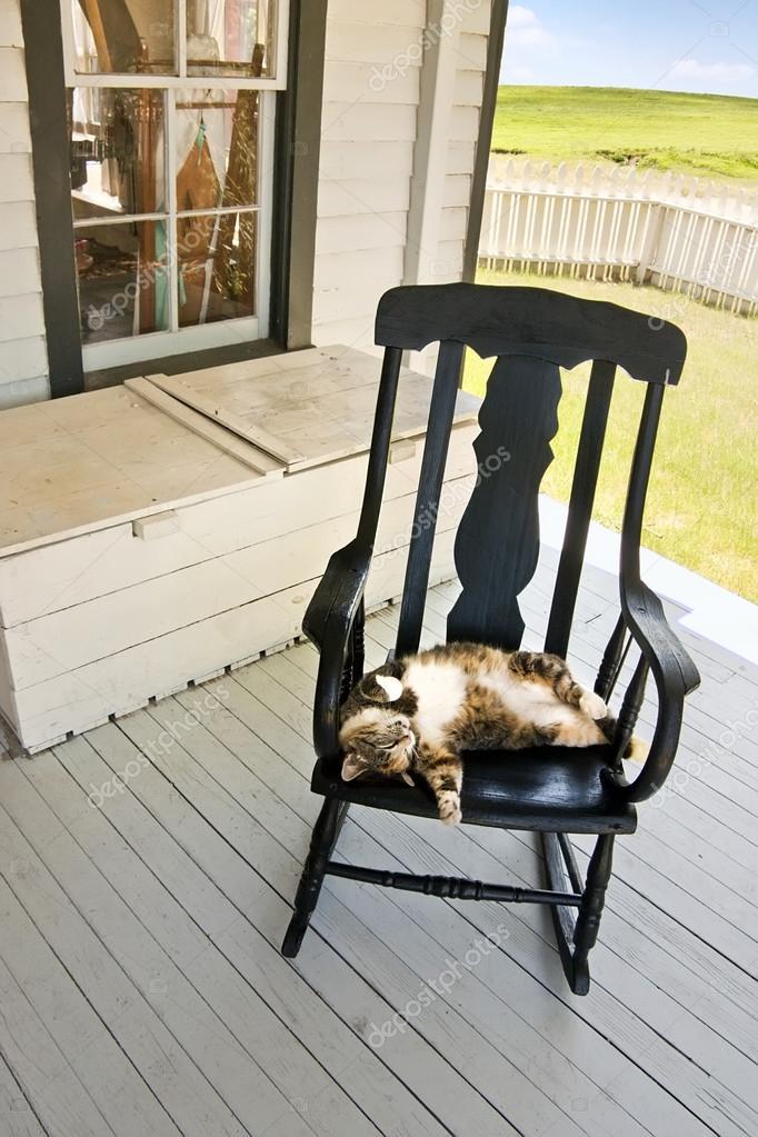 Fantastic Cat Sleeps Upside Down Stock Photo C Rcreitmeyer 34827845 Ibusinesslaw Wood Chair Design Ideas Ibusinesslaworg