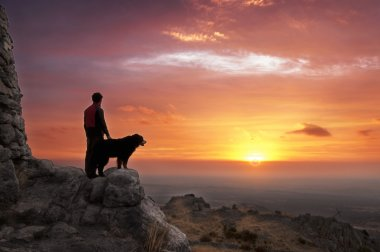 Man and dog at dawn