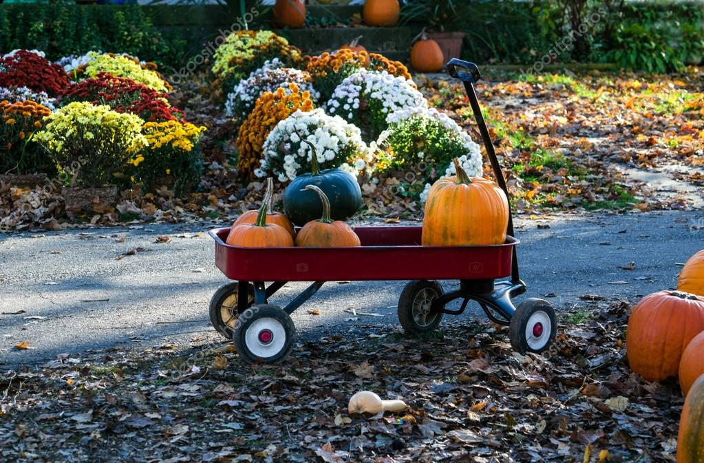 Red wagon full of pumpkins