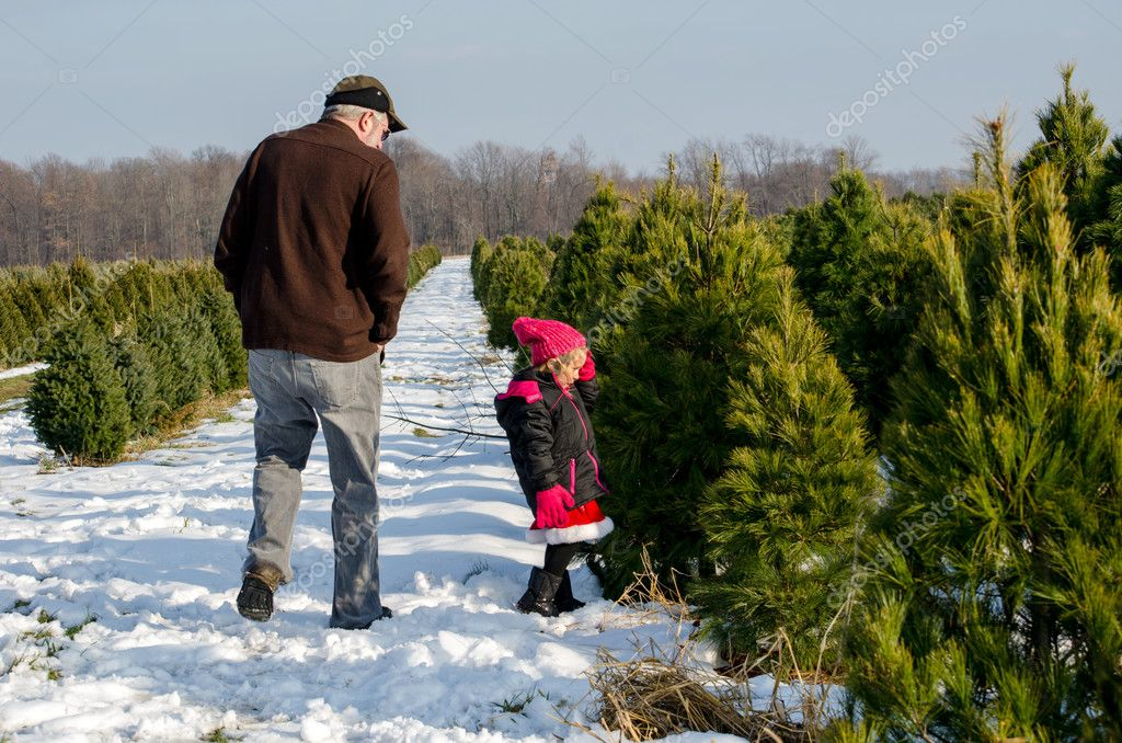 Man and Little girl at Christmas tree farm