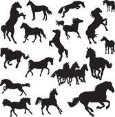 19 vektor képek a lovak