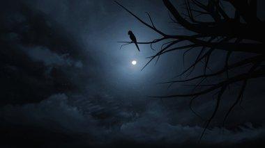 Night sky on Halloween.