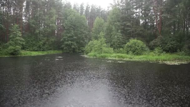 Heavy rain on the forest lake