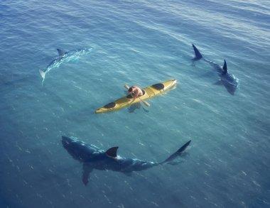 Shark attack on a ship
