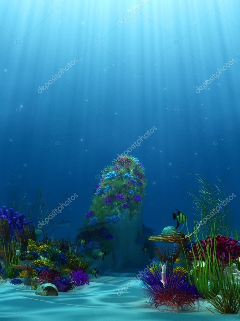 Underwater scenery with coral reefs