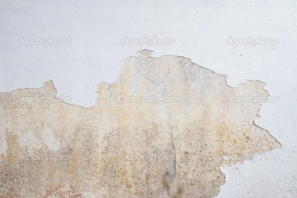 Schimmel Auf Weisse Wand Wachst Stockfoto C Praiwun 32858295