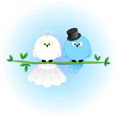 Stylish Bride and Groom Birds