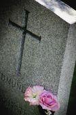 Fotografie Blumen auf einem Grabstein