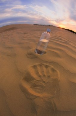 Bottle Of Water In The Sand