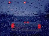 Vehicle Lights In Rain