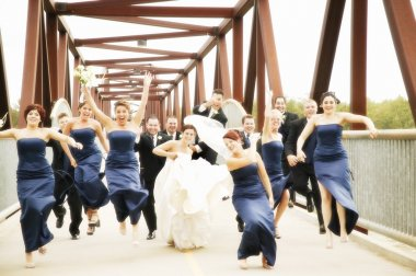 Bride, Groom, Bridesmaids And Groomsmen