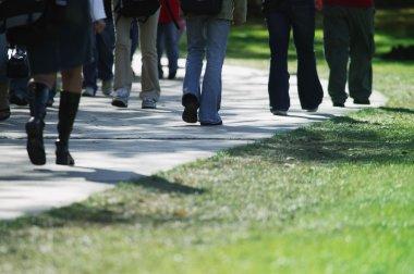 People Walking On Path