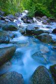 rychle tekoucí řeka