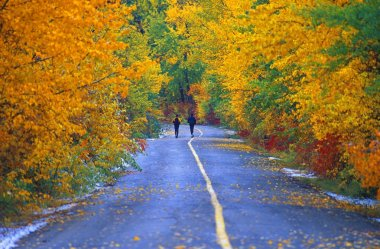 Two People Jogging Down The Road In Autumn