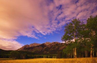A Scenic Landscape