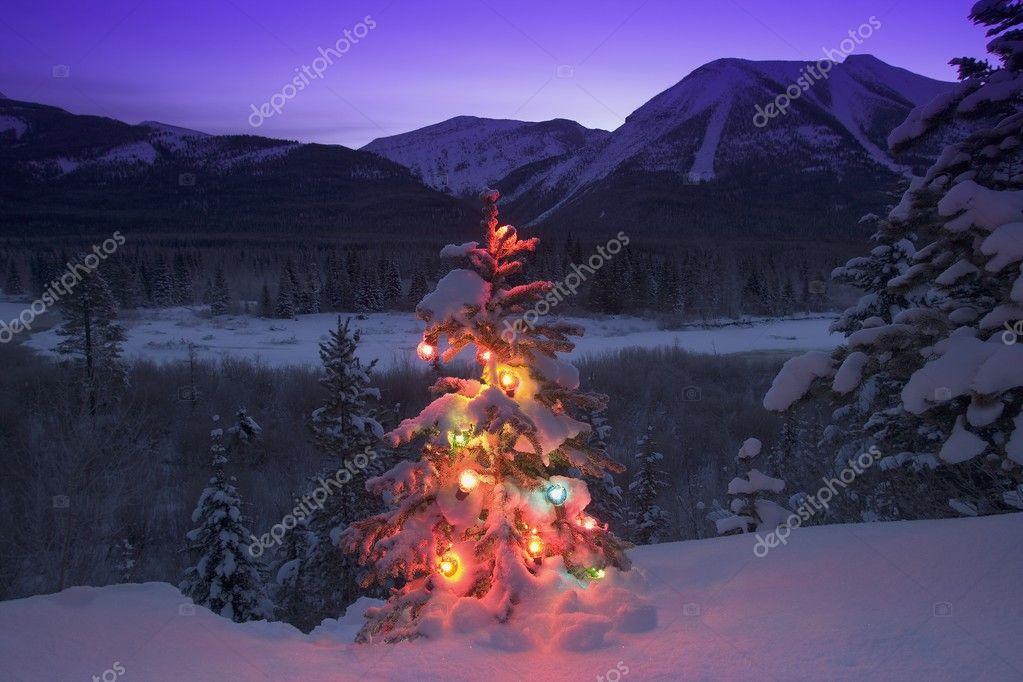 verlichte kerstboom in de bergen — Stockfoto © DesignPicsInc #31683265