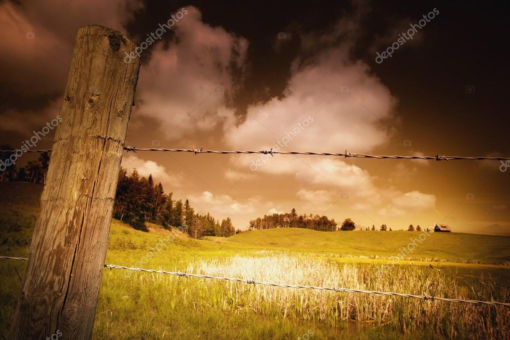 Barbed Wire Fence And Fields