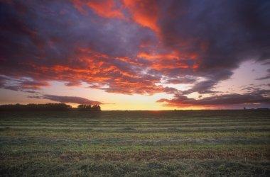 Scenic Sunrise. Set Over Field.
