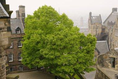 Edinburgh, Scotland In The Mist