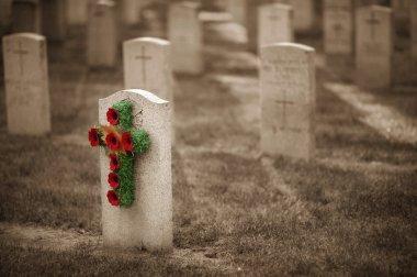 Poppy Cross On Tombstone