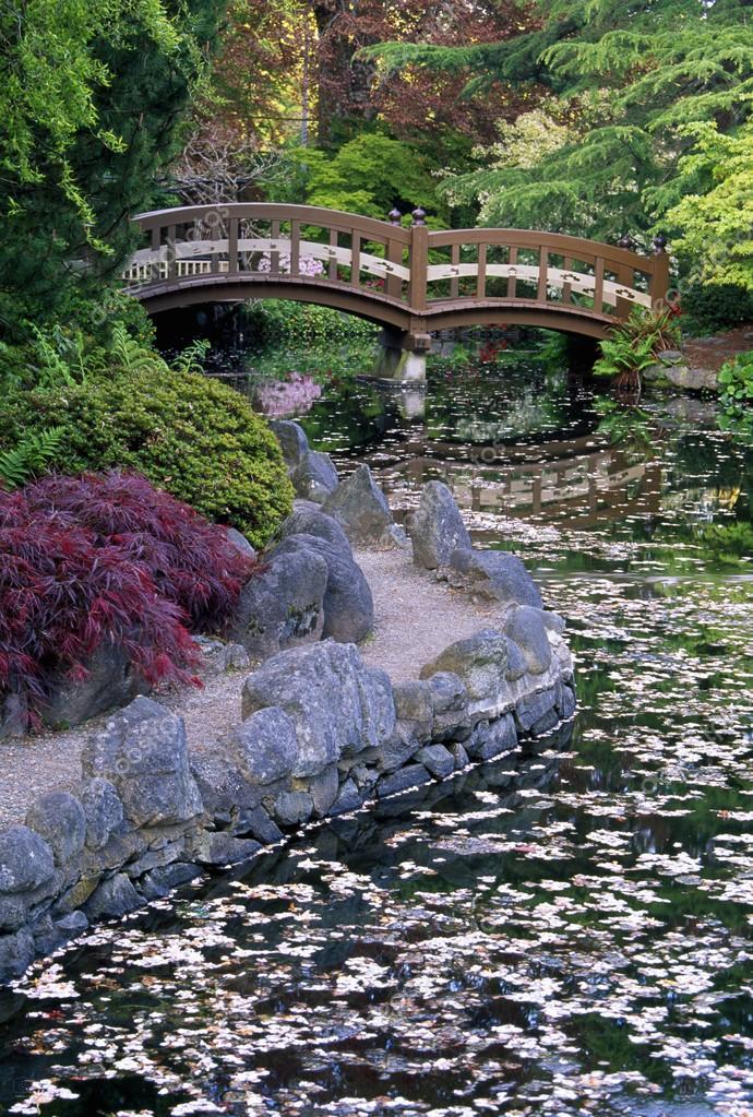 Japanese Garden Bridge Over Stream, Royal Roads University, Vancouver  Island U2014 Stock Photo #