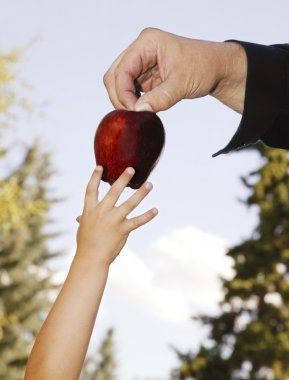 Father Passing Fruit To Child