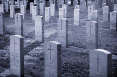 Gravestones stock vector