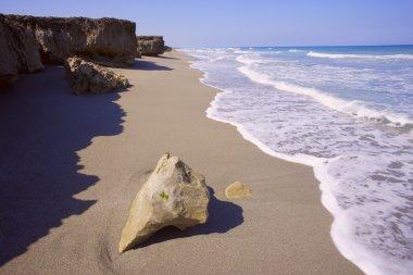 Big Rock On A Beach