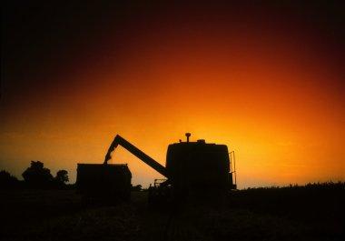 Combine Harvester, Ireland