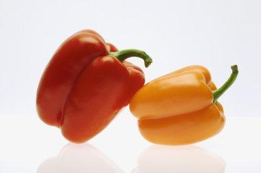 Red Pepper Leaning On An Orange Pepper
