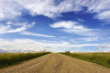 Gravel Road With Fields And White Clouds