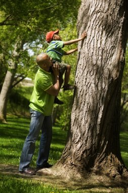Father Helping Son To Climb On Tree