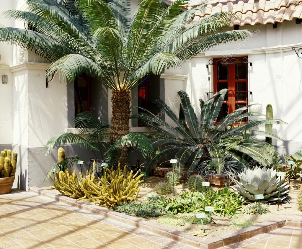 Una casa con giardino di cactus foto stock - Foto case con giardino ...