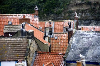 Rooftops Of Staithes, North Yorkshire, England