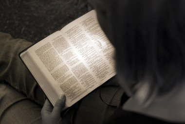 Woman Reading The Bible