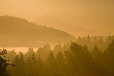 Mount Hood, Oregon, USA. Silhouetted Landscape At Sunrise