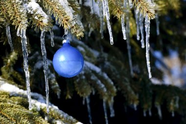 Christmas Ornament On Tree Branch With Icicles