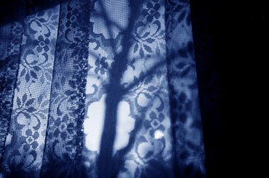 Silhouette Of A Tree Through Curtains