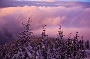 Sunrise Over Mount Hood, Oregon, USA