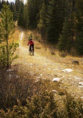 Teenager Riding Bike Down Path