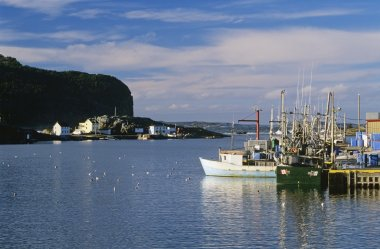 Fishing Boats, Salvage, Newfoundland