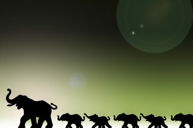 Elephants In A Row
