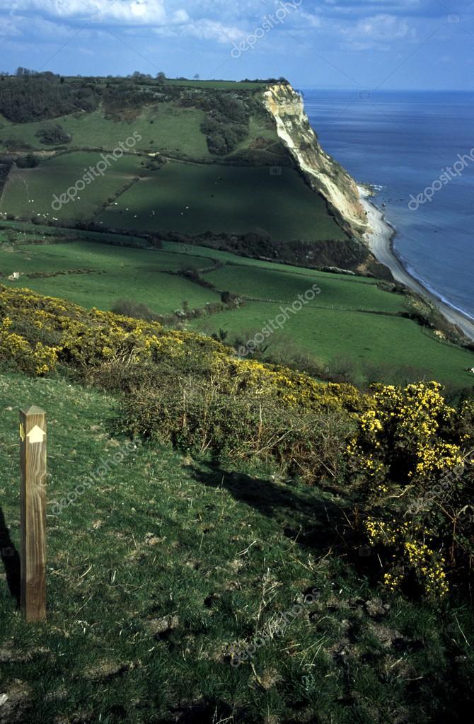 Devon, England, United Kingdom. Coastal Fields And Paddocks